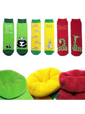 Набор носков в коробке, 3 пары, махровые Big Bang Socks. Цвет: салатовый, желтый, красный