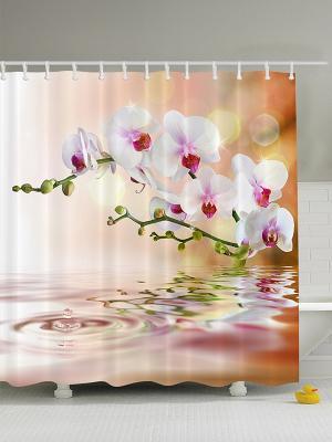 Фотоштора для ванной Цветы и стебли, 180*200 см Magic Lady. Цвет: белый, оранжевый, салатовый, светло-оранжевый, фуксия