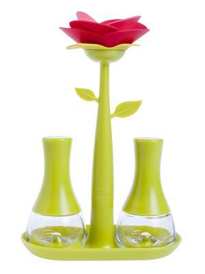 Набор емкостей для соли и перца VIGAR. Цвет: зеленый