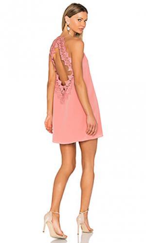Платье the soho CAMI NYC. Цвет: розовый