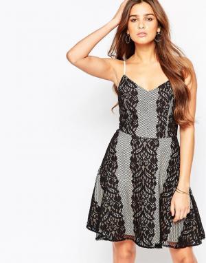 Adelyn Rae Короткое приталенное платье с кружевными вставками. Цвет: мульти
