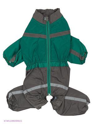 Дождевик холодный (Американский Кокер), мальчик ТУЗИК. Цвет: зеленый