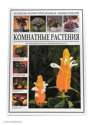 БИЭ. Комнатные растения Издательство СЗКЭО. Цвет: белый