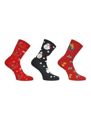 Носки 3 пары Master Socks. Цвет: антрацитовый, малиновый