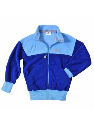 Толстовка ЛисФлис. Цвет: синий, голубой
