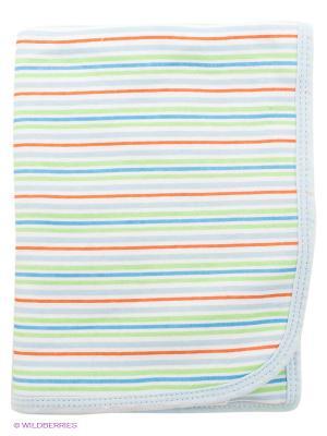 Пеленальное одеяльце Spasilk. Цвет: голубой, зеленый, терракотовый