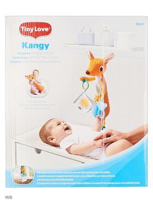 Развивающая игрушка  Кенгуру(517) Tiny Love. Цвет: оранжевый