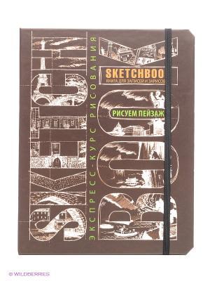 Sketchbook. Пейзаж (темно-коричневый) Эксмо. Цвет: коричневый