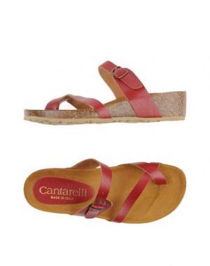 Вьетнамки CANTARELLI. Цвет: красно-коричневый