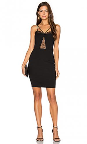 Платье из нежных кружев с декольте Nightcap. Цвет: черный