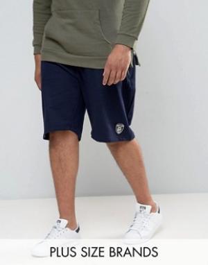 Loyalty & Faith Трикотажные спортивные шорты and PLUS. Цвет: темно-синий