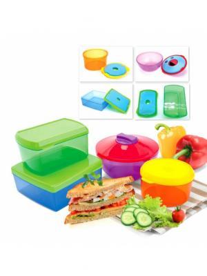 Набор контейнеров с охлаждающим элементом (4 шт.) BRADEX. Цвет: зеленый, фиолетовый, синий
