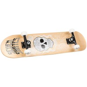 Скейтборд в сборе  Sugar Skull 7.8 Seven. Цвет: бежевый