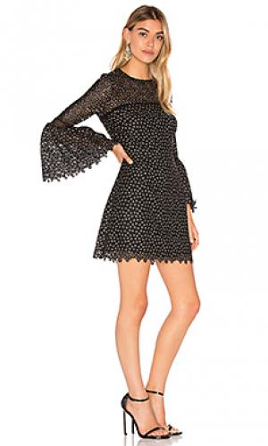 Платье с вышивкой ditzy Cynthia Rowley. Цвет: черный