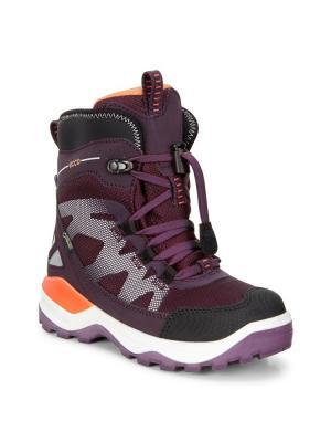 Ботинки ECCO. Цвет: черный, лиловый, малиновый