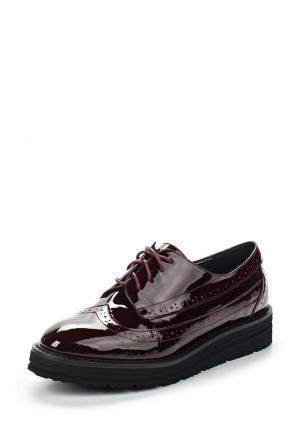 Ботинки Evita. Цвет: бордовый