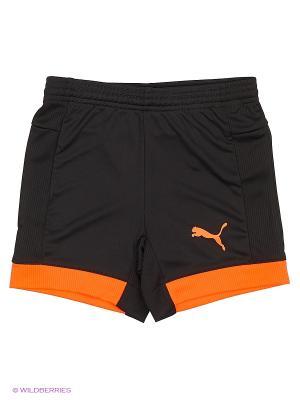 Шорты IT evoTRG Jr Shorts Puma. Цвет: черный, оранжевый