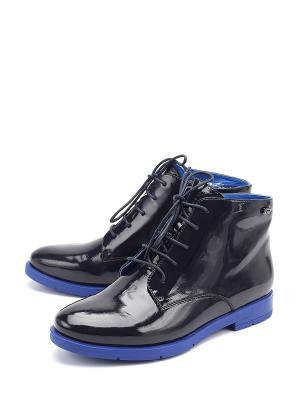 Ботинки Molka. Цвет: синий