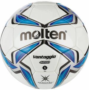 Мяч футбольный  IMS FIFA Molten