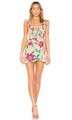 Приталенное и расклешенное платье fillmore Privacy Please. Цвет: peach