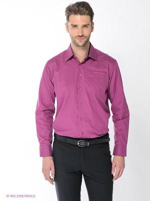 Рубашка Maestro. Цвет: фуксия