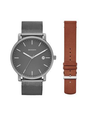 Часы SKAGEN. Цвет: серый, коричневый