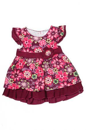 Платье Mon Caramel. Цвет: фиолетовый