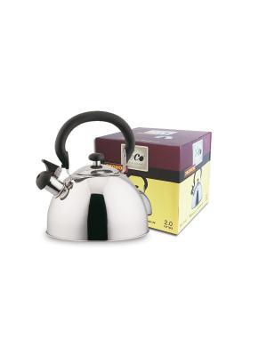 Чайник TECO 119-TC  (2,0 л. со свистком,нерж.сталь стали)нержавеющая сталь.Свисткок.. Цвет: серебристый
