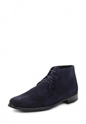 Ботинки Pierre Cardin. Цвет: синий