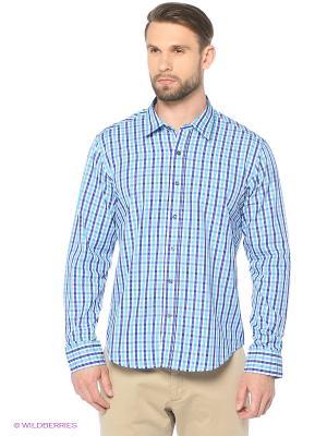 Рубашка KARFLORENS. Цвет: бирюзовый