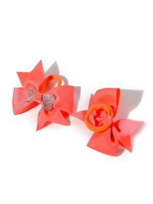 Резинки Bizon. Цвет: оранжевый