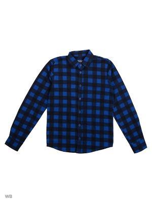 Рубашка  для мальчика Bonito kids. Цвет: черный, синий