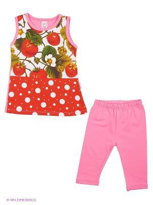 Комплект одежды CALAMITA. Цвет: розовый