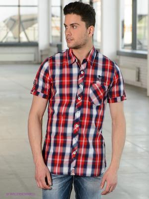 Рубашка Lonsdale. Цвет: красный, белый, синий, голубой