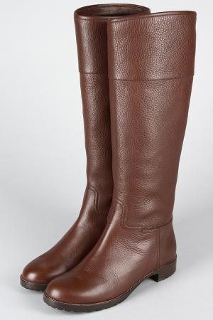 Сапоги Giuseppe Zanotti Design. Цвет: коричневый