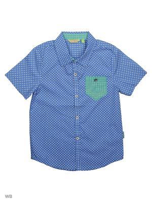 Рубашка Liguo. Цвет: лазурный, белый