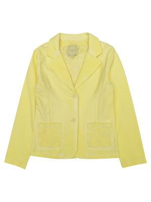 Пиджак Silvian Heach kids. Цвет: светло-желтый, серый