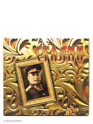 Сталин: концептуальное подарочное издание Феникс. Цвет: бежевый