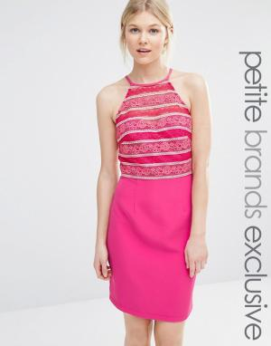 Paper Dolls Petite Облегающее платье с высокой горловиной и кружевом. Цвет: розовый
