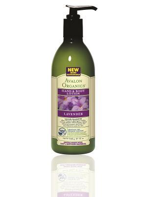 Лосьон для рук и тела с маслом лаванды, 360 мл Avalon Organics. Цвет: белый