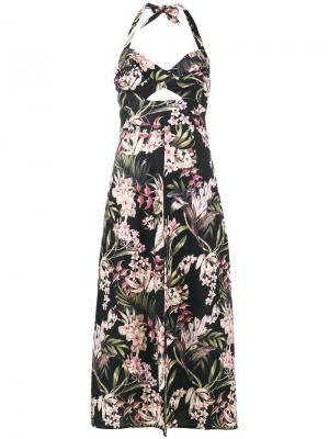 Платье с вырезом-петлей халтер и цветочным принтом Zimmermann. Цвет: чёрный