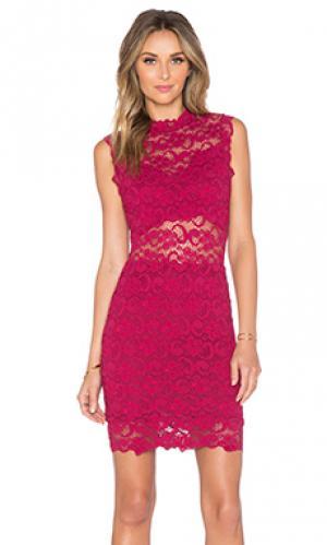 Мини платье с вырезом dixie Nightcap. Цвет: красное вино