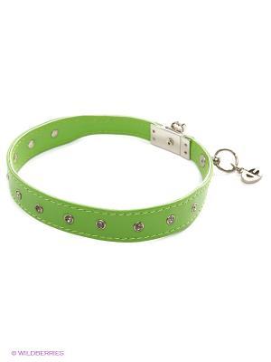 Ошейник Doggy Style. Цвет: зеленый