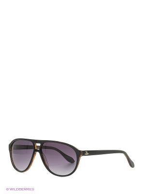 Солнцезащитные очки AN 737 01 Vivienne Westwood. Цвет: черный, коричневый