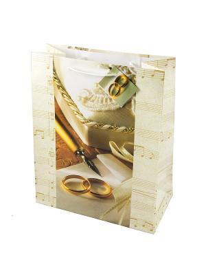 Комплект пакетов из 12шт. 26*32см Русские подарки. Цвет: белый