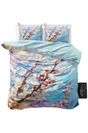 Комплект постельного белья Евро Sleeptime. Цвет: синий