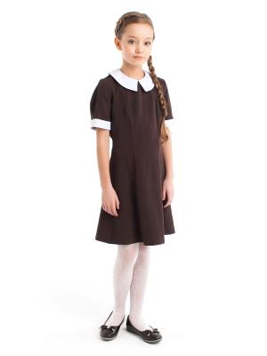Платье со съемным воротником ПКФ Успех