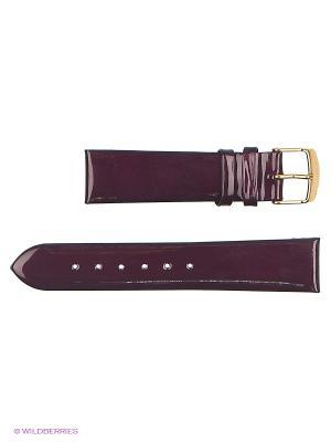 Ремень для часов, ЛАК, без строчки J.A. Willson. Цвет: темно-фиолетовый