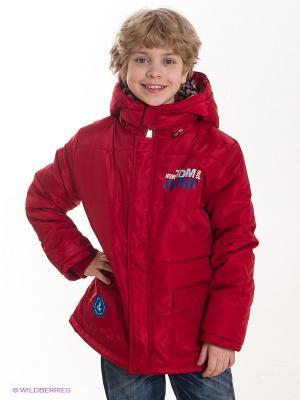 Куртка TOM and JERRY. Цвет: красный