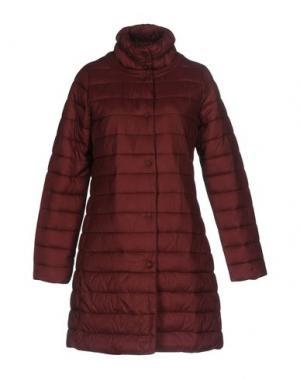 Куртка PAOLO CASALINI. Цвет: красно-коричневый